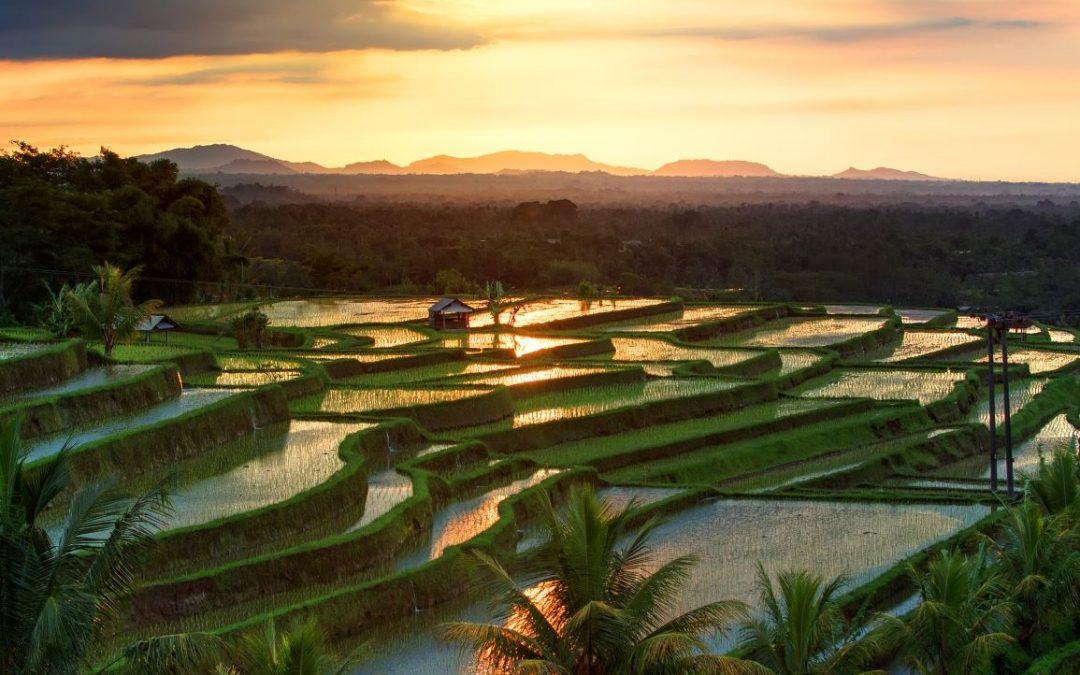 Indonésia, um país sagrado